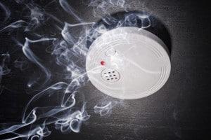 rookdetector-01.jpg
